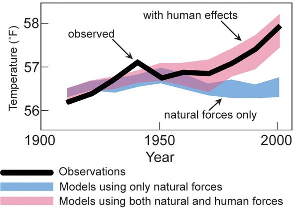 models-observed-human-natural-large